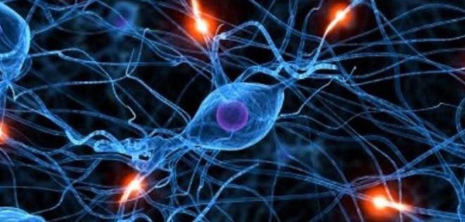 الهرمونات والحالة النفسية