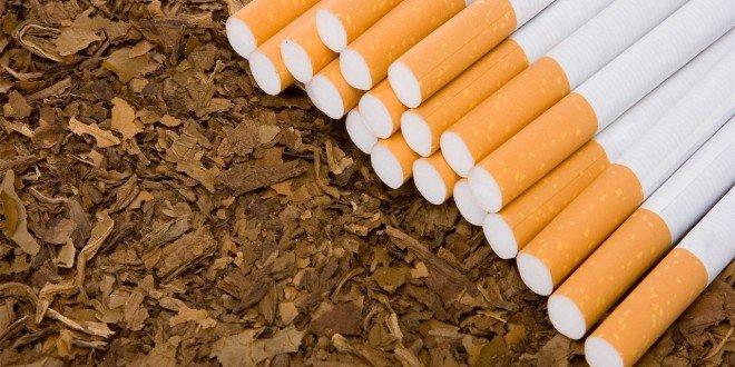 مخاطر التبغ